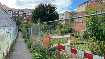 The community garden near St Johns Street, Norwich, and the old Rose Lane car park