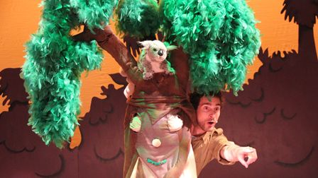 Stage set with a koala puppet in a tree and a man looking round the trunk