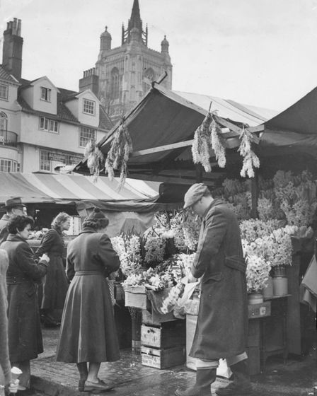 There was a touch of Spring about Norwich Market. Flowers offered for sale seemed to have taken full