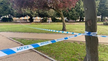 Stabbing in St George's Park Great Yarmouth