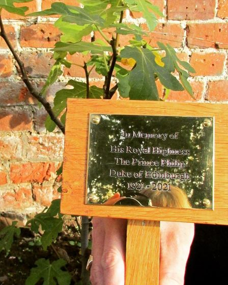 A new plaque has been unveiled at The Walled Garden to go alongside a new fig tree in honour of Prince Philip