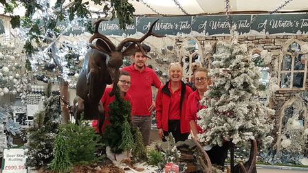 Staff at Sprowston Garden Centre are ready to spread Christmas cheer.