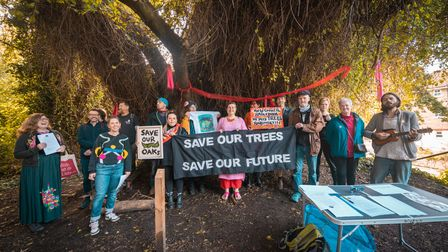 Residents protesting against plans to fell trees on the Parkland Walk