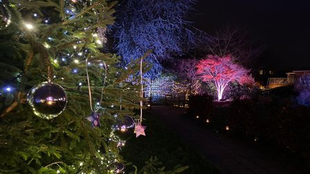 The annual Lights of Life Festival will return to Garden House Hospice Care this year