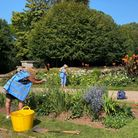 Volunteers tending to the gardens at Oldway, Paignton