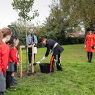 The Queen's Green Canopyis a unique tree planting initiative created to mark Her Majesty's Platinum Jubilee in 2022.