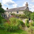 Three bedroom cottage in quiet rural area near Honiton