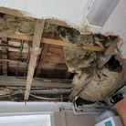 Gaping Ceiling