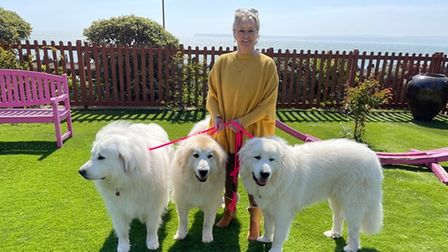 Sally Allen and her canine family