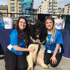Laura and Karlie with Eddie the Newfoundland dog.