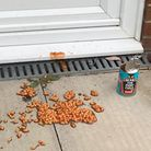 Baked beans left on a doorstep in Dussindale on Friday night