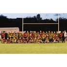 Hornets have reached their first Bristol Combination Cup final this century.