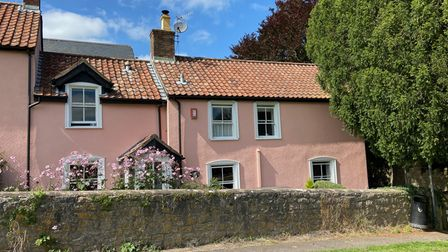 Pink painted cottages in Mead Lane, Blagdon, with white windows, flower gardens and a wall in front and conifer on the right.