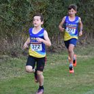 St Albans Athletic Club's youngsters enjoyed the return of cross-country racing.