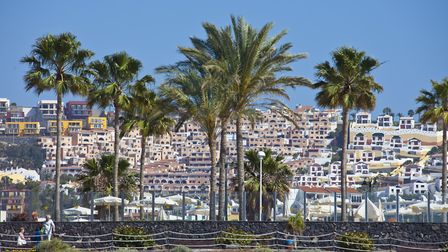 Palm trees and hotels in Playa de las Americas, Tenerife. Picture: Getty Images