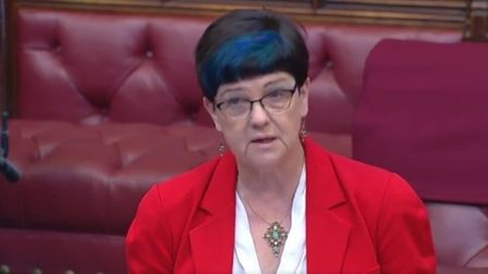 Baroness Neville-Rolfe in the House of Lords. Photograph: House of Lords.