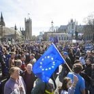 Remainers at a March for Europe event after the EU referendum result